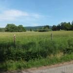 Blick übers Kirdorfer Feld