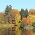 Schlossteich im Herbstlicht