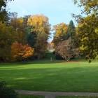 Blick über den Inselgarten vom Schloss aus