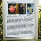 Tropicarium - Tieflandregenwald