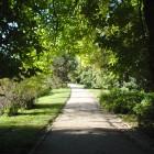 Weg im Schloßpark