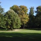 Bäume im Kurpark von Bad Homburg