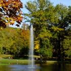 Schwanenteich im Kurpark Bad Homburg