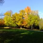 Kurpark im Oktober 2013