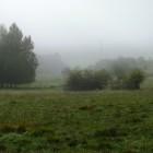 Kirdorfer Feld im Herbstnebel